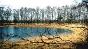 Landschapswandeling op de Groote Slink