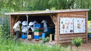 Bijenstal Verdeliet