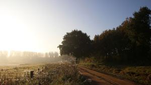 Pruuf de Herfst