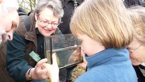 Op zoek naar waterbeestjes in de Broekse Wielen
