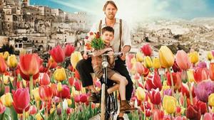 foto tulipani