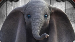 'Dumbo' bij Myllesweerd