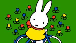 Nijntje op de fiets bij de Weije