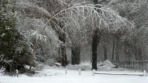 Winterwandeling in kerstsfeer