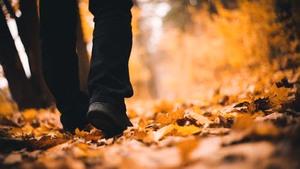 wandelen