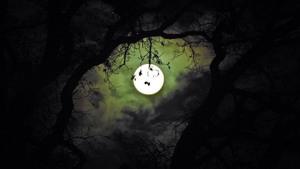 Nieuwe maan