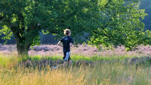 Kennismaking met trailrunning