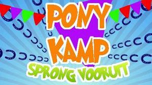 Ponykamp bij Sprong Vooruit