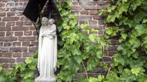 Lezing Tini Brugge over de kloostertuin