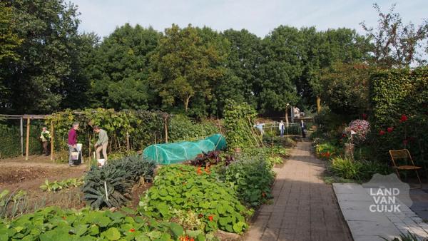 Cursus ecologisch tuinieren Wereldtuin Verdeliet