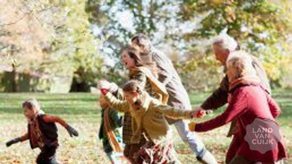 Family huifkar rit en pony ritjes voor kinderen