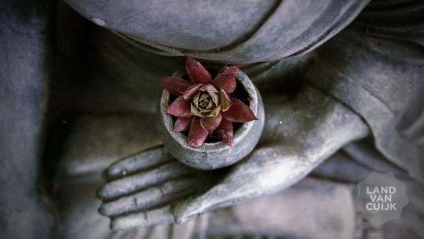 Mindfulness Me Time