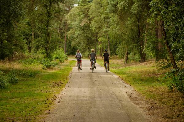 Drie bijzondere fietsroutes
