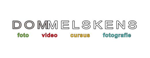 Foto Dom Melskens logo